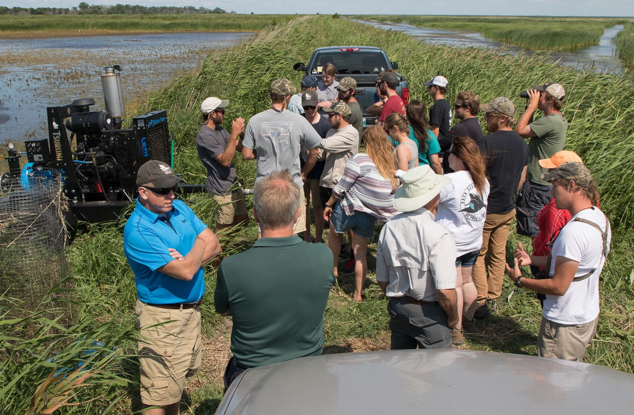 Delta Marsh - Field Tour